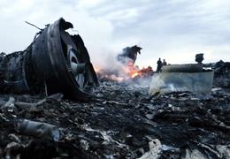 Над Украиной сбит самолет Malaysia Airlines (видео и фото)