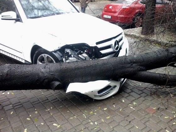 Упавшее дерево повредило дорогое авто Мерседес на переулке Маяковского