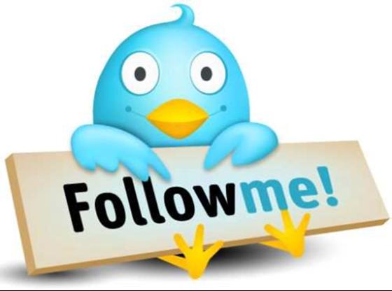 Птичка Twitter-а
